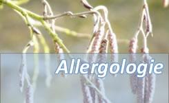 Leistungen in der Allergologie
